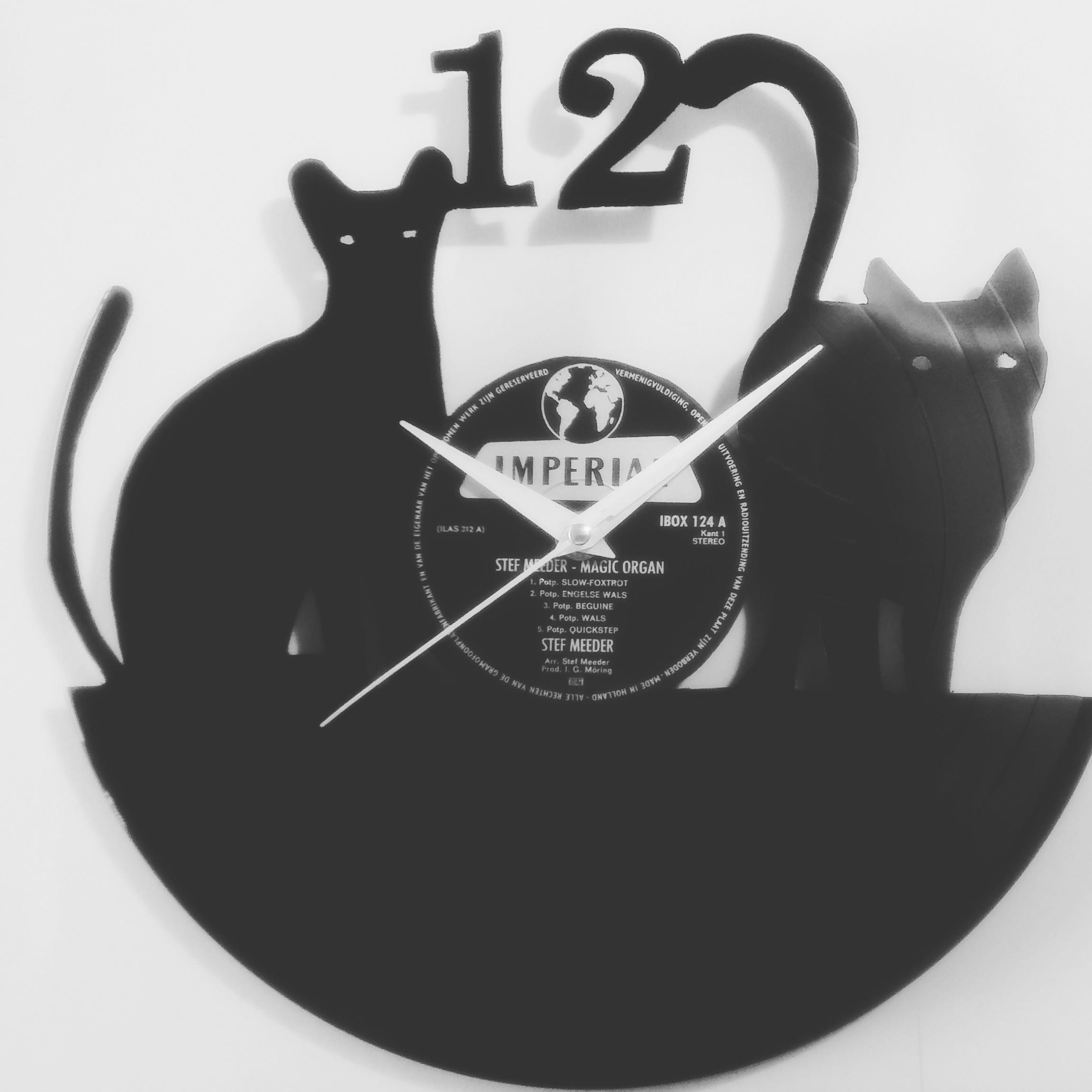 Twee katten (77)
